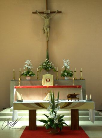 About the Parish | Roman Catholic Church of Our Lady & St