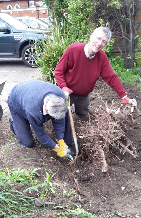 John and Philippe battling with roots 1