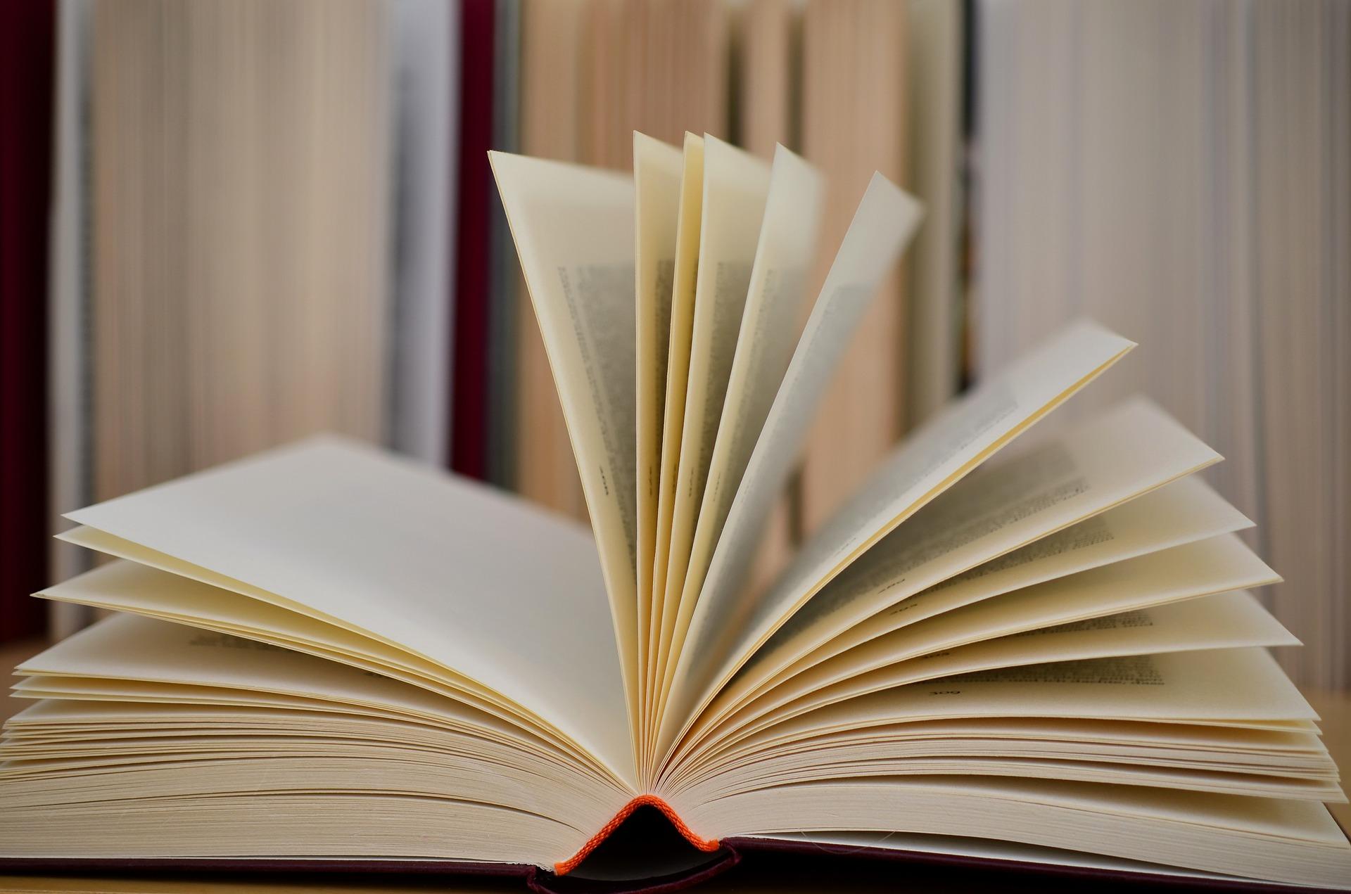 book-610189_1920